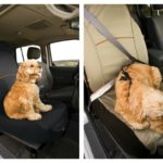 Co Pilot seat cover